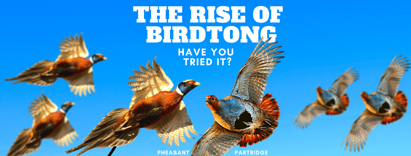 The rise of Pheasant game biltong, 4 reasons why you need to try